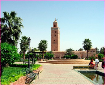 Visit Menara and Marjolle Gardens - Marrakech Botanical Tour with Horse Carriage